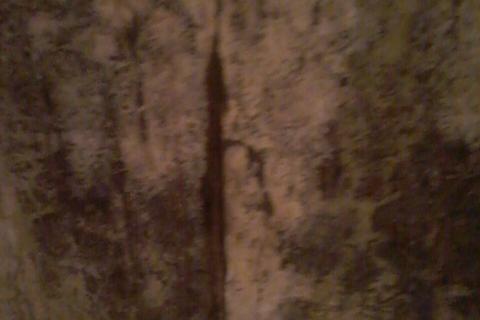 это трещина с плесенью в комнате